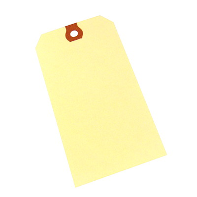 Crownhill Packaging Blank Shipping Tags REINFORCED HOLE CASE OF 1001