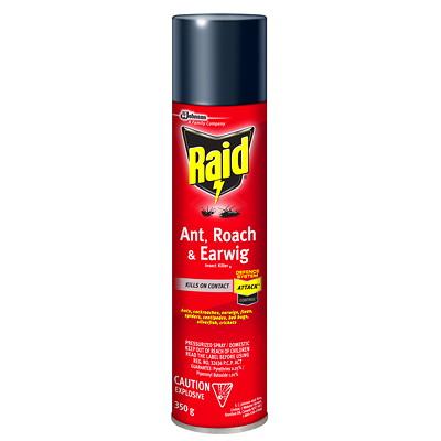 Raid Ant, Roach and Earwig Insect Killer, 350 g, Aerosol Spray  RTU  350G SPRAY CAN