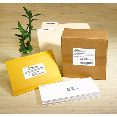"""Avery 5160 Easy Peel Address Labels, White, 1"""" x 2 5/8"""", 30 Labels/Sheet, 100 Sheets/BX 30/SHEET PERMANENT ADHESIVE AVERY 100 SHEETS/BX 3000/BX"""