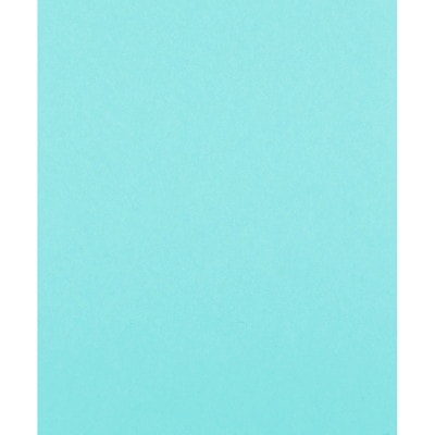 Papier couleur à usages multiples Fireworx Boise, certifié FSC, 20 lb, rame 500/PQT  CASCADE USAGES MULTIPLES