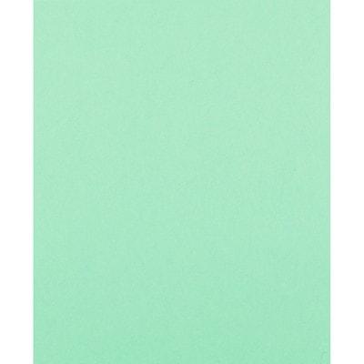 Papier couleur à usages multiples Fireworx Boise, certifié FSC, 20 lb, rame VERTE  500/PQT  CASCADE USAGES MULTIPLES