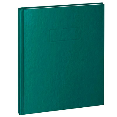Blueline A9 Notebook STIFF VINYL COVER REINFORCED HINGE RULED W/ MARGIN 192 PAGE