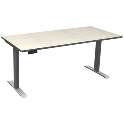 """HDL Athena Sit-to-Stand Desk, Winter Wood, 48"""" x 24"""" x 27 1/2""""-45 1/2"""" WINTER WOOD TOP/ SILVER BASE 24"""" DEEP X 48"""" WIDE"""