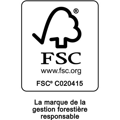 Papier couleur à usages multiples Fireworx Boise, certifié FSC, 20 lb, rame VERTE  500/PQT  CASCADE USAGES MULTIPLES