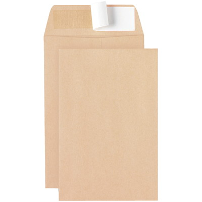 Ascend Peel-to-Seal Natural Kraft Envelopes 6 X 9 NATURAL KRAFT PEEL-TO-SEAL
