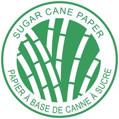 "Blueline DuraGlobe Sugar Cane Daily Planner, 8"" x 5"", Black, January 2021-December 2021, Bilingual  FLEXIBLE COVER  BLACK  BIL 8"" X 5""   FSC CERTIFIED"