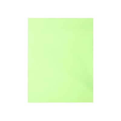 Mark Maker Legal-Sized (8 1/2 x 14) Green Coloured Surrogate Court Backs Pk of 100 MAG-E813