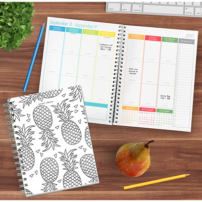 TF Publishing Color Me Academic Weekly/Monthly Planner 7X8.5 SPIRAL PLANNER