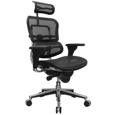 Eurotech ErgoHuman Synchro-Tilt Chair  SYNCHRO TILT SINGLE LEVER ADJU ADJUSTABLE HEADREST  SEAT DEPT