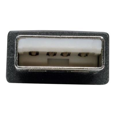 """Tripp Lite 18in USB to Null Modem Serial Adapter FTDI w/ COM Retention M/F 18"""" - serial adapter - USB - RS-232 DB9 ADAPTER FTDI  CO"""