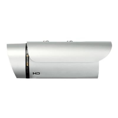 D-Link DCS 7110 HD Outdoor Day & Night Network Camera - network surveillance camera ight Network Camera  Megapixel  CMOS Sensor  0 Lux
