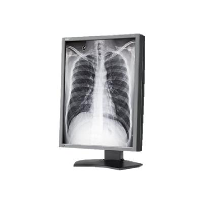 "NEC MultiSync MD212G3 - LCD monitor - 3MP - grayscale - 22""  MNTR"