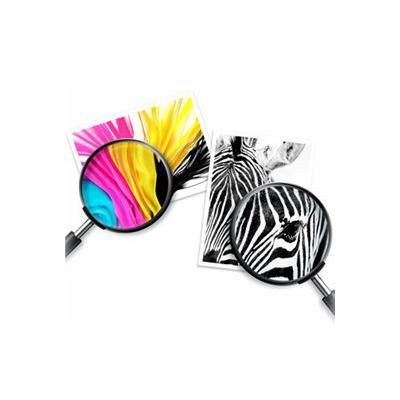 HP 21/22 - 2-pack - color (cyan, magenta, yellow), pigmented black - original - ink cartridge LK & TRI C