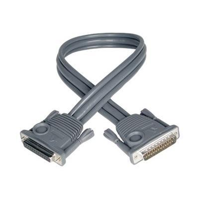 Tripp Lite 2ft KVM Switch Daisychain Cable for B020 / B022 Series KVMs 2' - câble clavier / vidéo / souris (KVM) - 61 cm VM SWCH B0