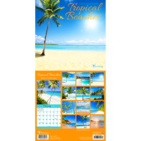 TF Publishing Tropical Beaches Mini Monthly Desk Calendar, 7