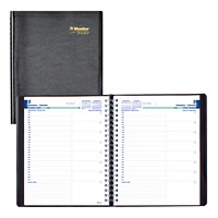 Blueline Daily Planner, 11