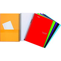 Five Star 2-Subject Wirebound Heavy-Weight Notebook, Assorted Colours (No Colour Choice On Delivered Orders), 9 1/2
