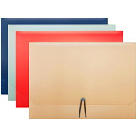 Winnable 13-Pocket Expandable File, Assorted Colours (No Colour Choice on Delivered Orders), Letter Size