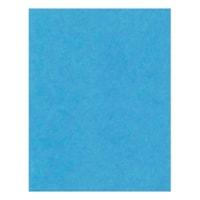 Carton bristol épais à 4 épaisseurs Hilroy, bleu pâle, 22 po x 28 po