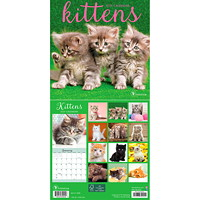 TF Publishing 12-Month Kittens Mini Monthly Wall Calendar, 7