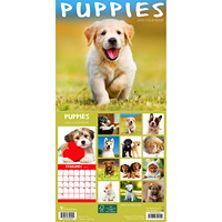 TF Publishing 12-Month Puppies Mini Monthly Wall Calendar, 7