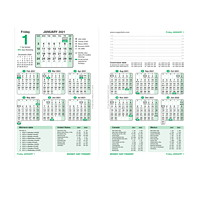 Brownline 12-Month Money Dayfinder Daily Financial Calendar Refill, 7 1/4