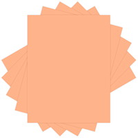 EarthChoice Colors Multi-Purpose Paper, Salmon, Letter Size, 500 Sheets/Ream