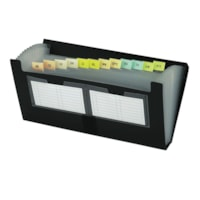 Filexec Black Poly Expanding File, Cheque-Size (4