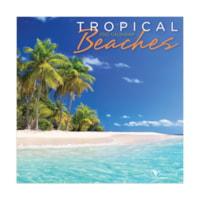 TF Publishing 12-Month Mini Cubicle/Wall Calendar, Tropical Beaches, 7
