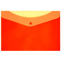 VLB Frosted 2-Pocket Poly Envelope