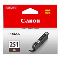 Canon 251 Black Inkjet Cartridge (6513B001)