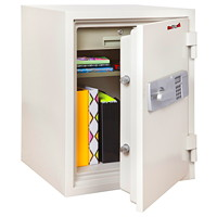FireKing 2-Hour Fire Safe, Arctic White, 1 Drawer/Shelf