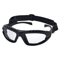 Dentec Hornet DX Safety Glasses
