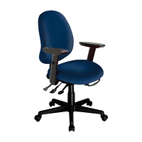 ErgoCentric Saffron Mid-Back Ergonomic Multi-Tilt Task Chair