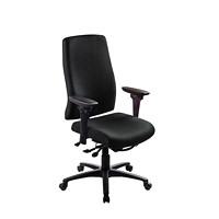 ergoCentric uCentric Ergonomic High-Back Multi-Tilt Chair
