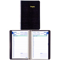 Blueline Essential Daily Planner