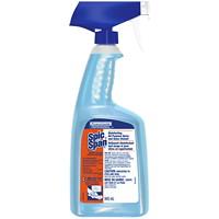 Nettoyant professionnel tout usage et pour vitres en vaporisateur Spic and Span