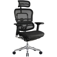 Eurotech ErgoElite Mesh Multi-Function High-Back Chair With Headrest