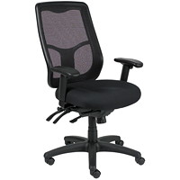 Eurotech Apollo Multifunction Chair With Ratchet-Back