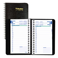 Blueline Daily Planner, 6