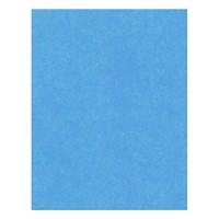 Hilroy 4-Ply Heavyweight Bristol Board, Light Blue, 22