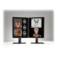 Barco Nio Color 2MP - LED monitor - 2MP - color - 21.3