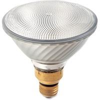 Satco 60-watt PAR38 Halogen Bulb